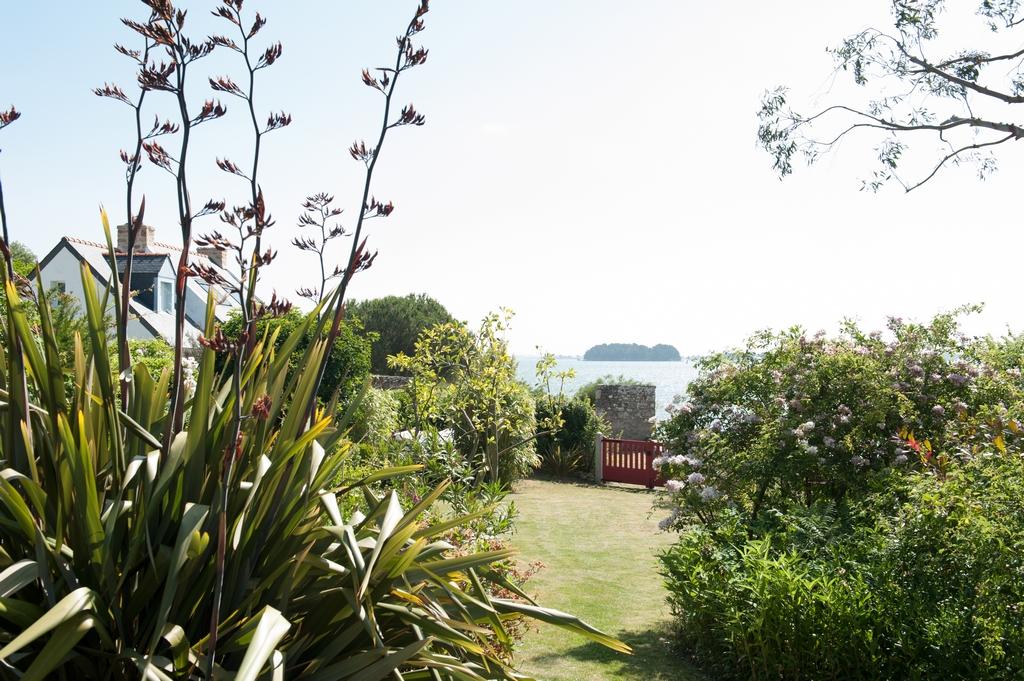 entretien jardin baden