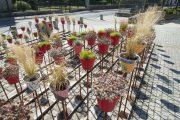 Jardin Éphémère - Eric JACOB Paysages et Pépinières