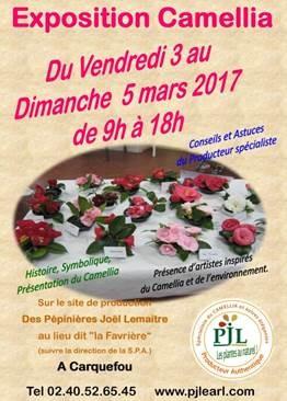 Affiche Exposition Camellia